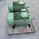Coppia di motori KW 37+37 (HP 50+50)